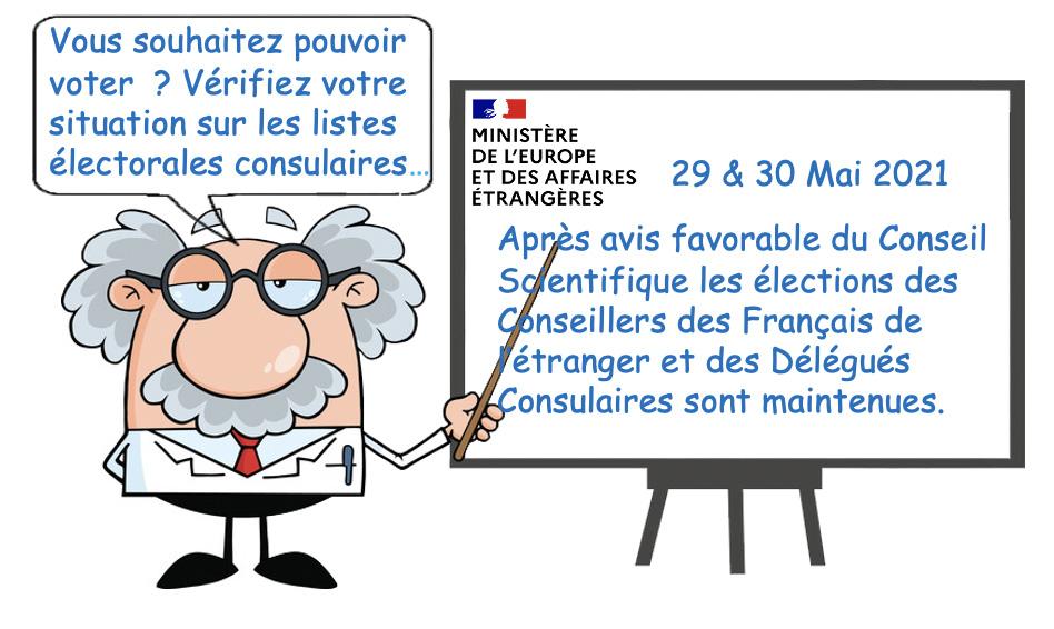 Elections des conseillers des Français de l'étranger et des délégués consulaires.